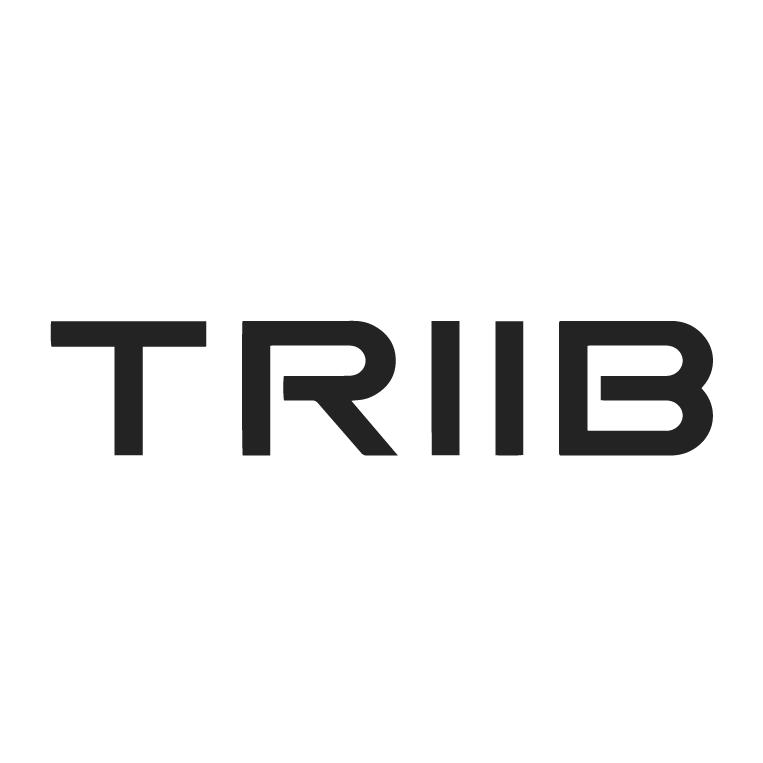 Triib reviews