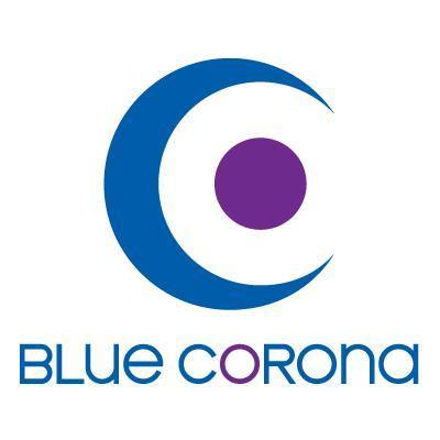 blue corona - interior design marketing