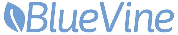 BlueVine - easy small business loans