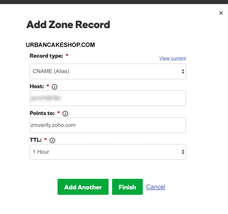 GoDaddy Domain Name zone record dashboard
