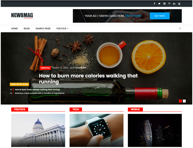 A visual of the Newsmag Lite - Responsive Free WordPress Theme