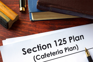 Section 125 Plan form