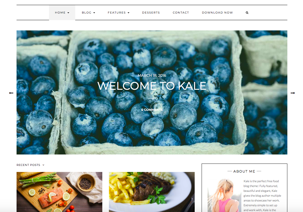 Kale - wordpress themes for business
