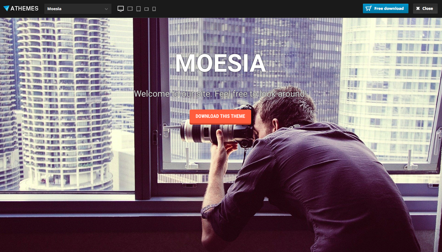 Moesia - wordpress themes for business