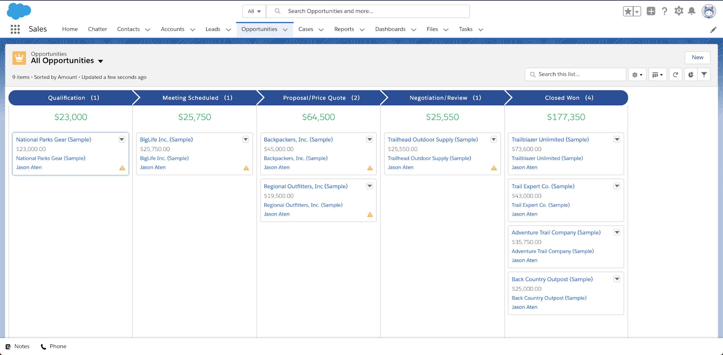 Salesforce Essentials - crm process