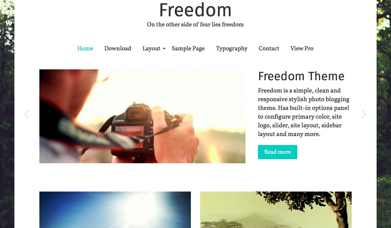 ThemeGrill - Freedom - best wordpress photography themes