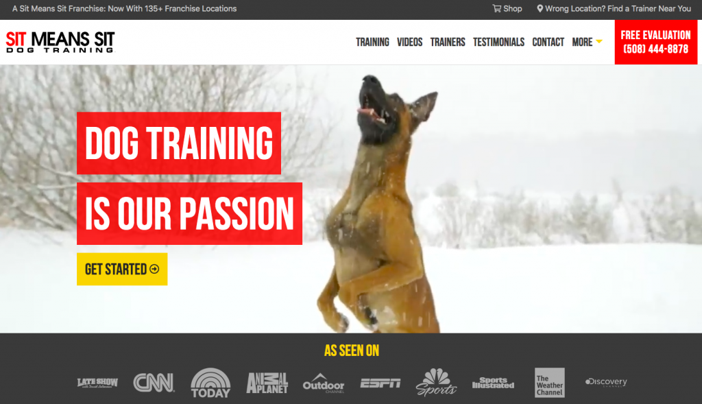 Sit Means Sit Dog Training - web design inspiration