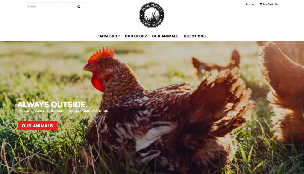 Primal Pastures - web design inspiration