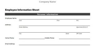 Screenshot of Employee Information Sheet
