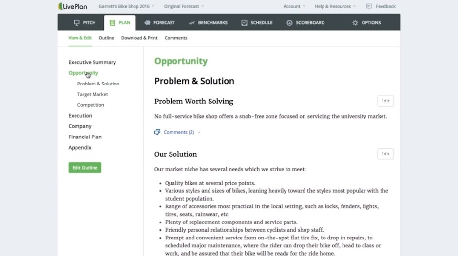 Screenshot of LifePlan Business Plan Software Problem and Solution