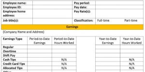 Screenshot of Pay Stub Template