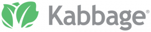 Kabbage - easy small business loans