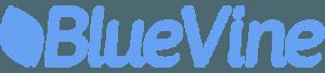 BlueVine - fast business loans