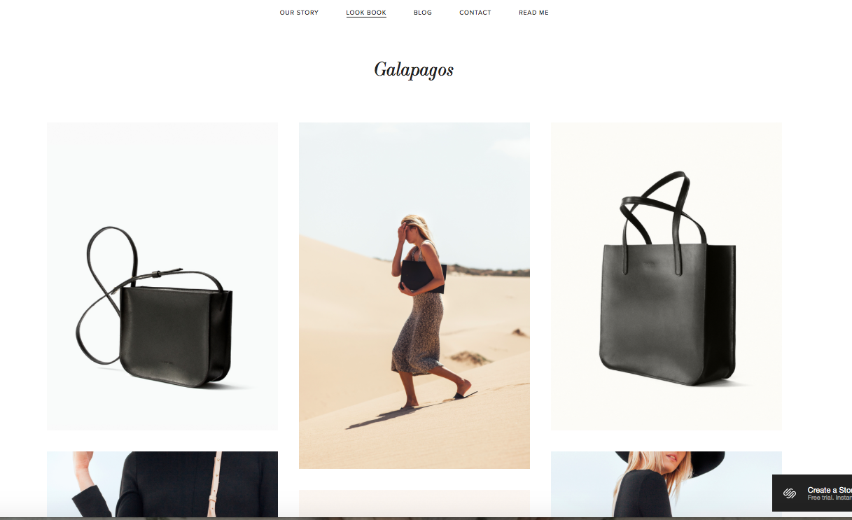 Galapagos - best squarespace templates