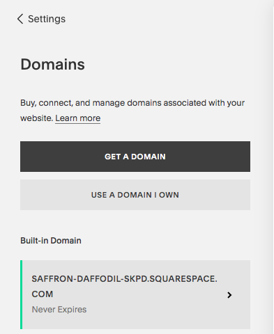 Connect a Domain to Squarespace Site