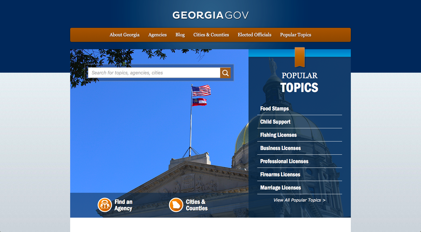 Georgia State Government Website Homepage