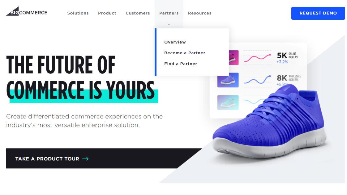 niche website