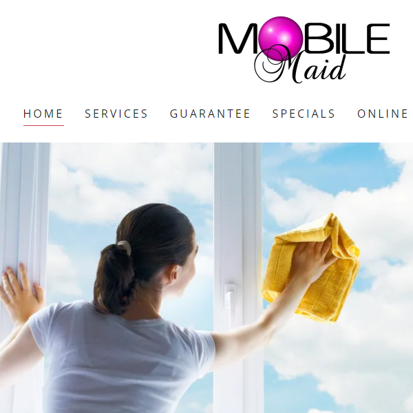 Mobile Cleaning Service - small business ideas for beginners - tips from the pros