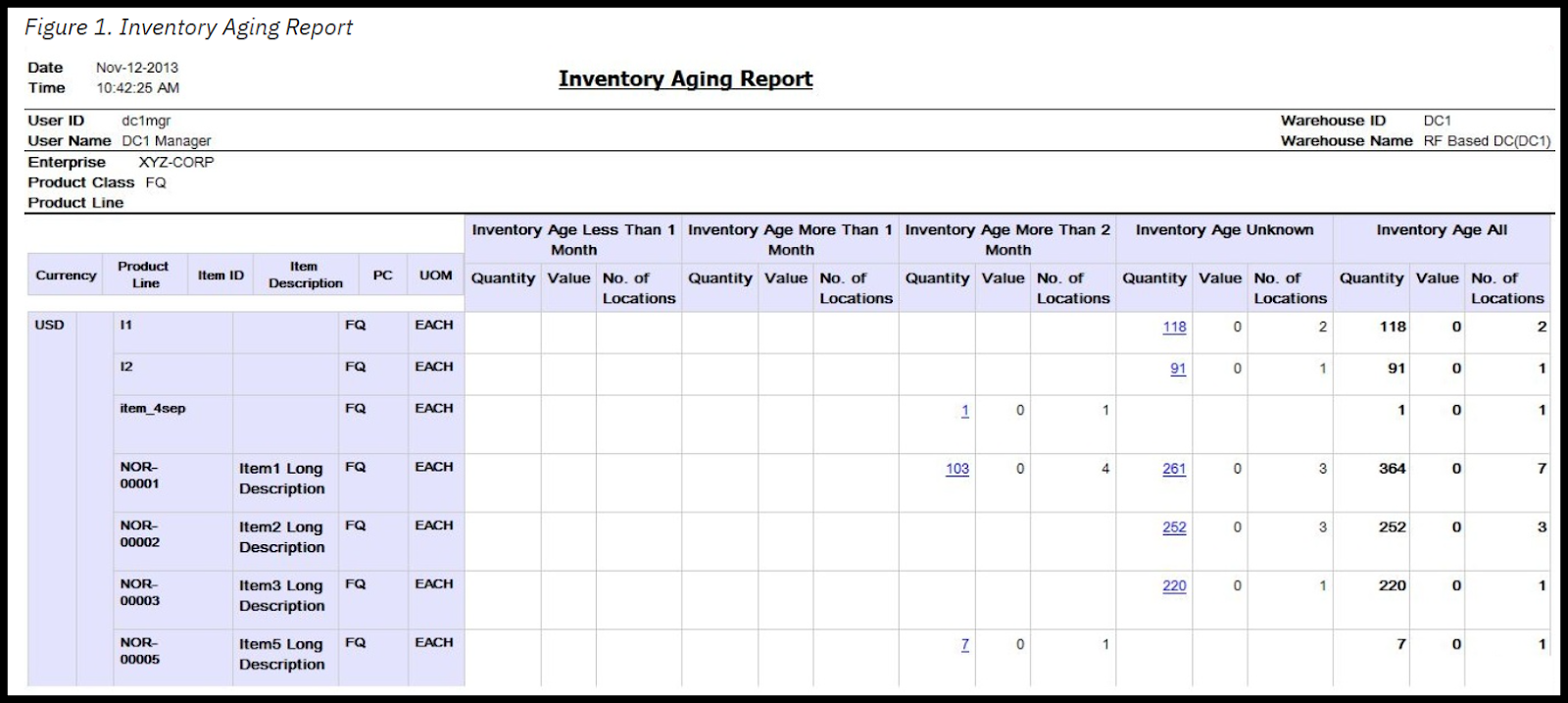 Sample Inventory Aging Report Generated in IBM