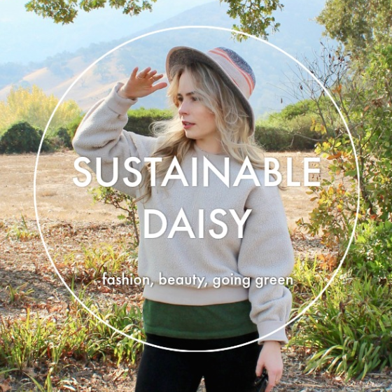 sustainable daisy blog image