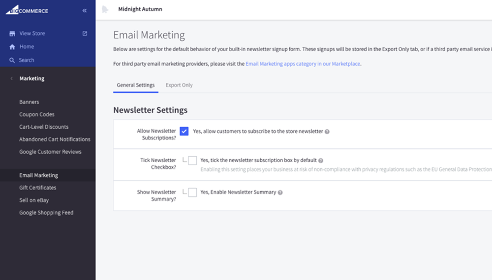 built-in Newsletter feature