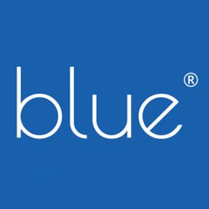 Blue Enterprise Surveys