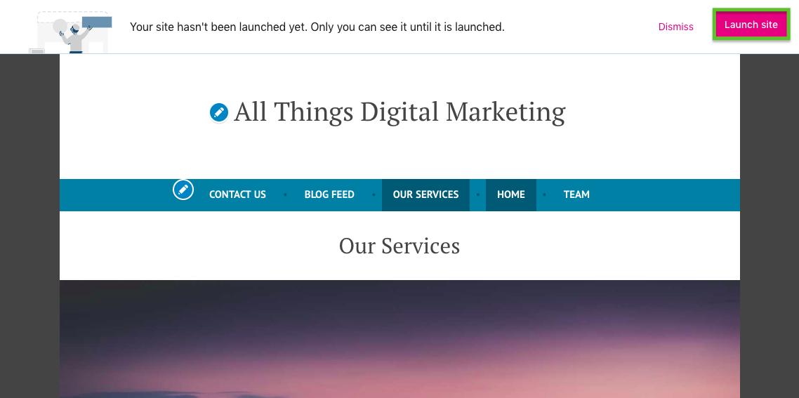 launching a wordpress website