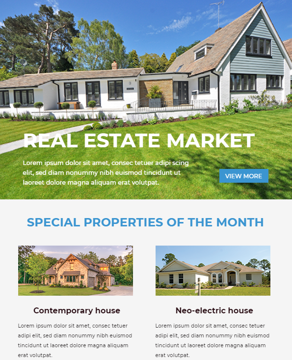 Monthly Real Estate Newsletter Template - real estate newsletter templates