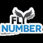 FlyNumber