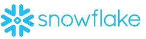 logo fiocco di neve