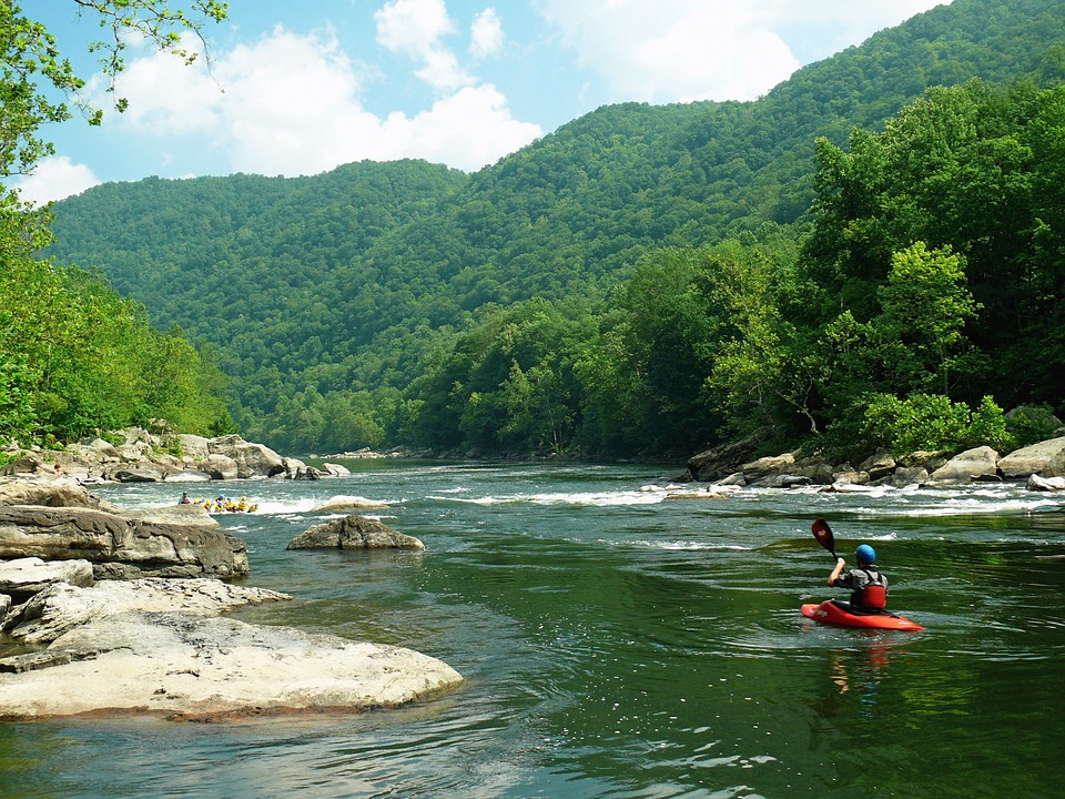photo of the wilderness in West Virginia