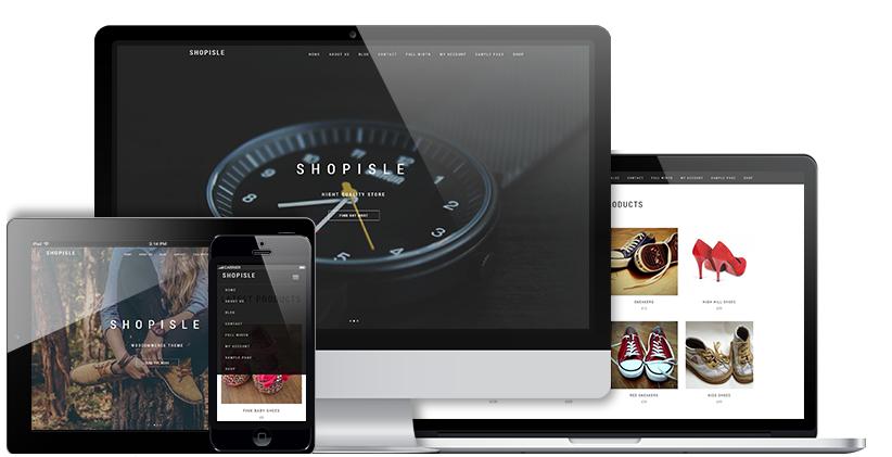 The developer-centric WooCommerce ecommerce plugin for WordPress info-graphics