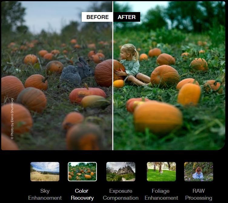 Photolemur color correction tools