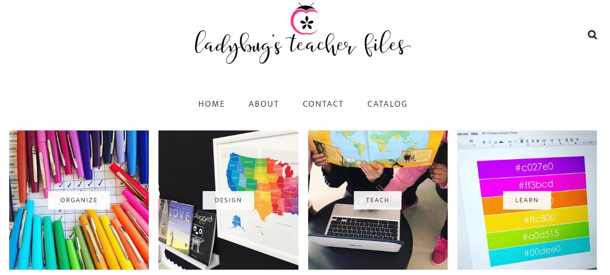 Ladybug's Teacher Files - teacher blogs infographic