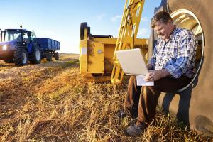 Man checking laptop
