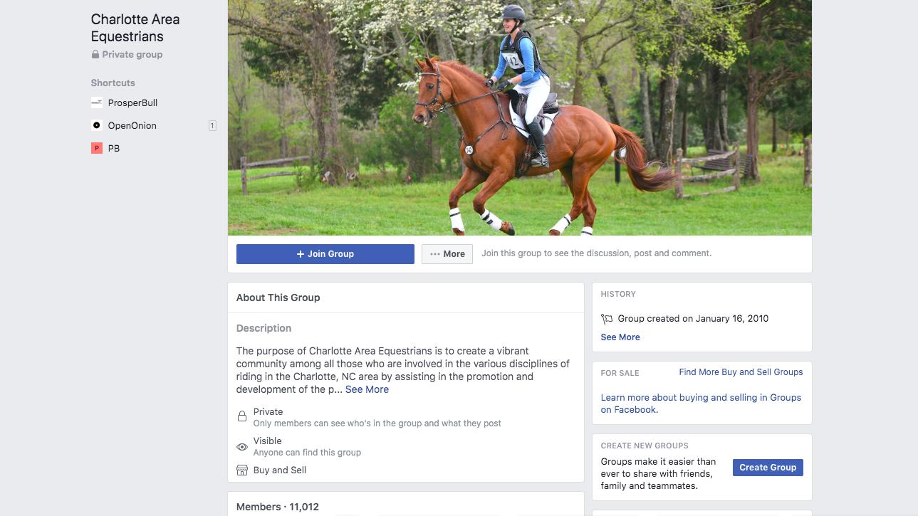 Grupo Charlotte Equestrians no Facebook