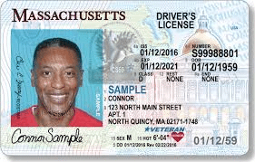 drivers license example