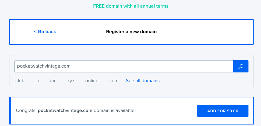 Checking the availability of the chosen domain name