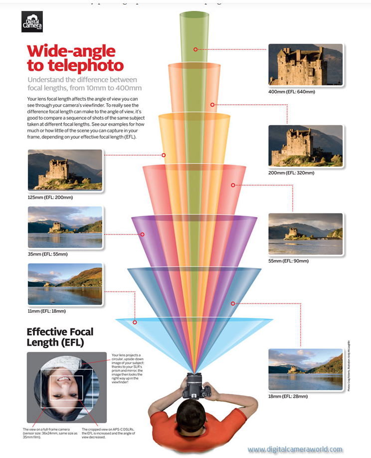 Example of an Infographic created by DigitalCameraWorld.com