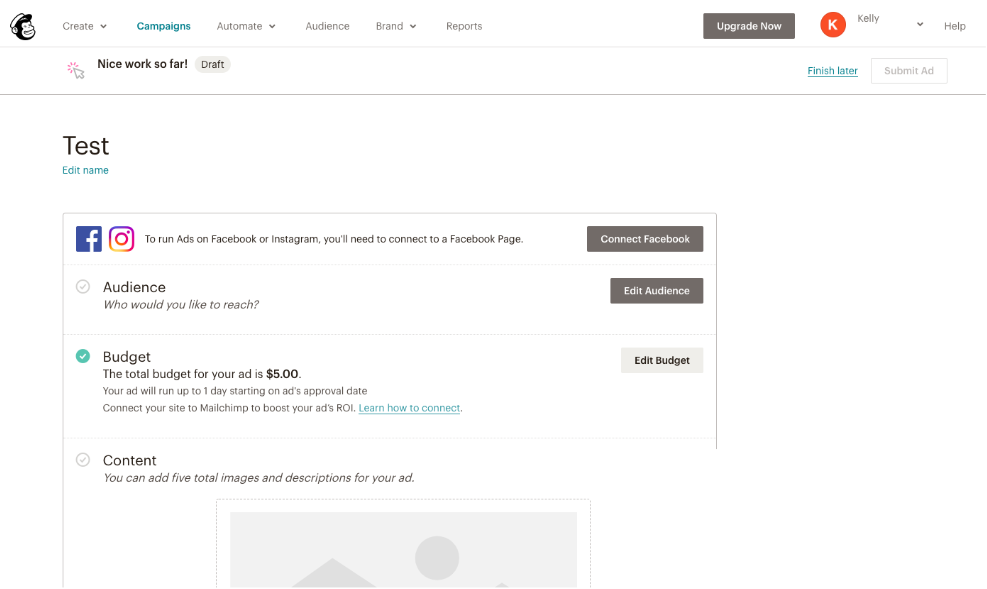 Mailchimp Social Media Ad Interface