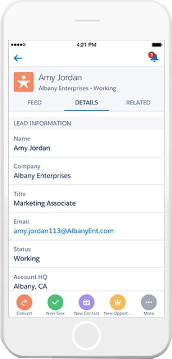 Salesforce lead interface from mobile