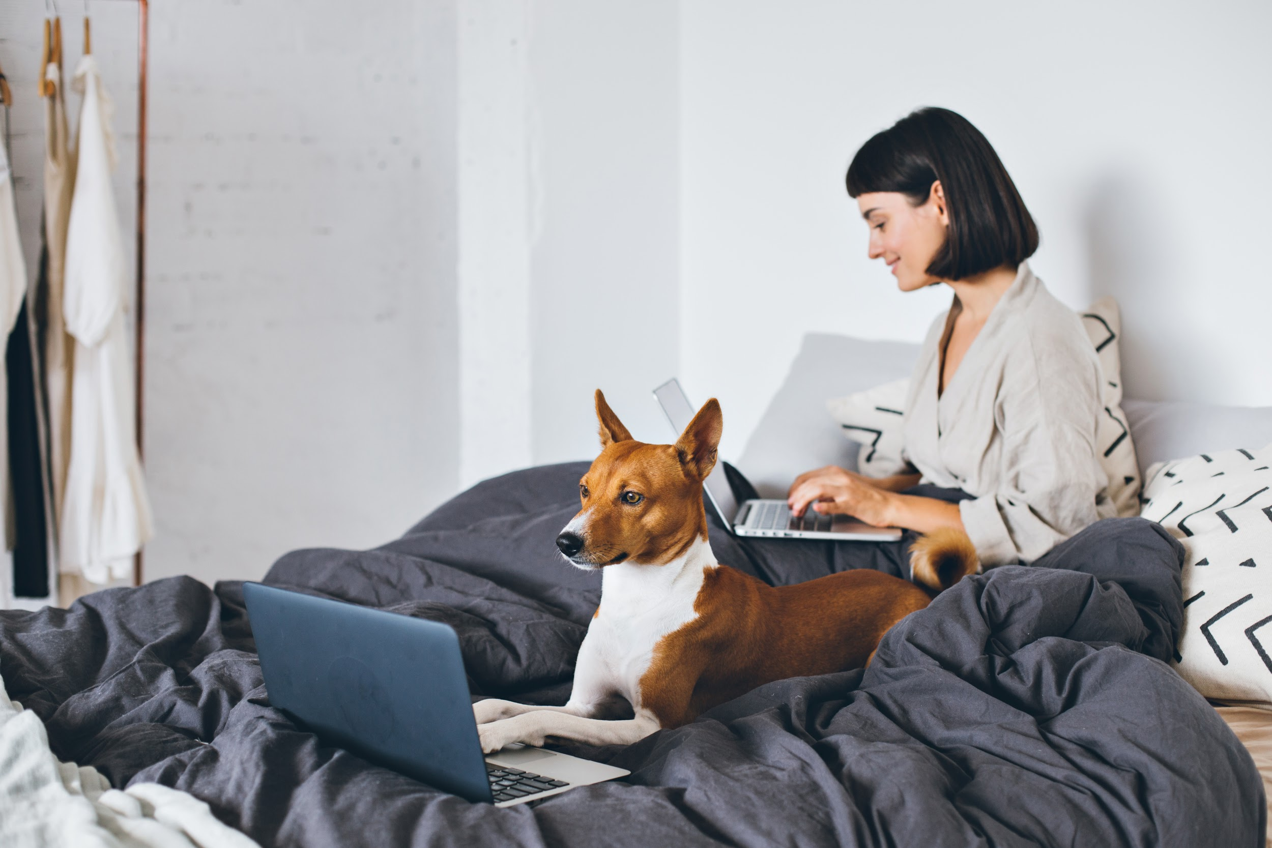 young woman and a dog working on their laptops on a bed