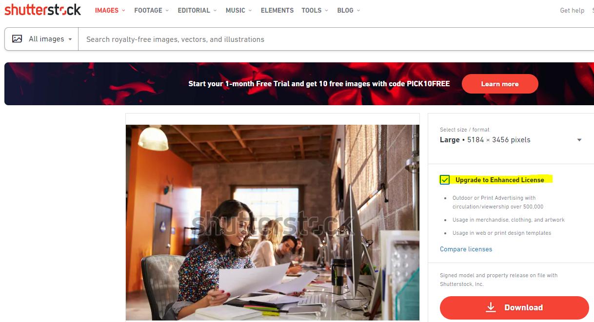 Shutterstock enhanced License screenshot