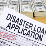 Disaster Loan Application