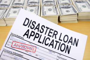 Disaster Loan Application