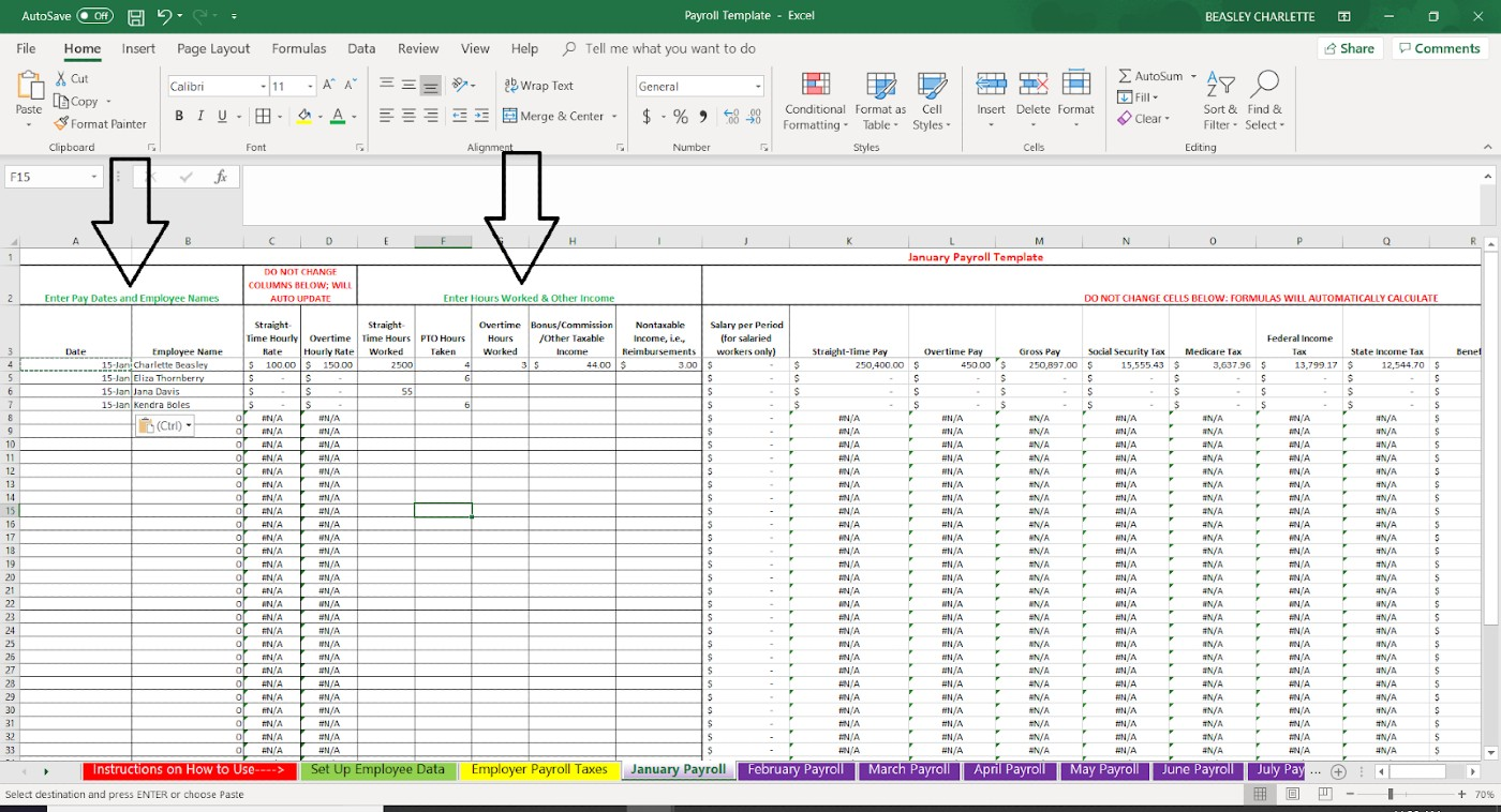 Screenshot Employee Data Example of a Monthly Payroll Sheet
