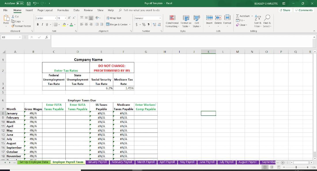 Screenshot of Employee Data Employer Payroll Taxes
