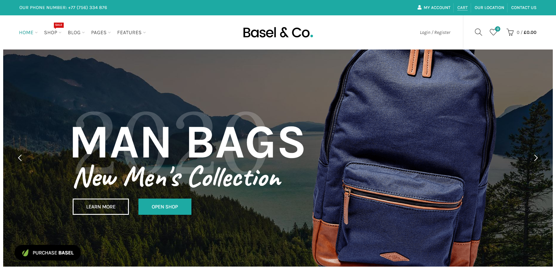 Basel & Co WordPress theme