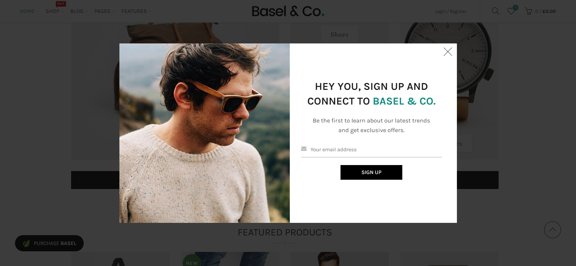 Example of Basel WordPress theme - Newsletter popup form