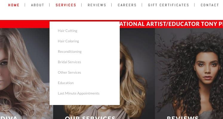 Screenshot of Salon Webpage